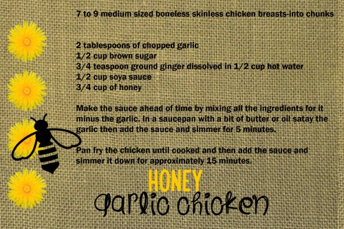 honey garlic copy
