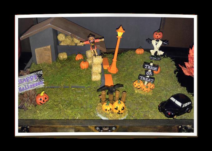 pumpkin pacth