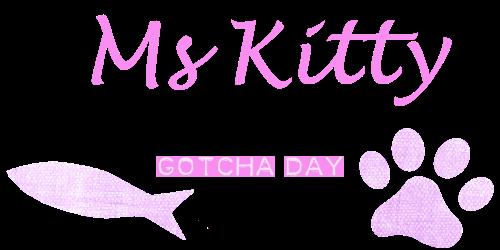 kitty tag.png