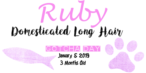 ruby tagg.png